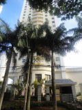 Ref. Araguaia-115 -